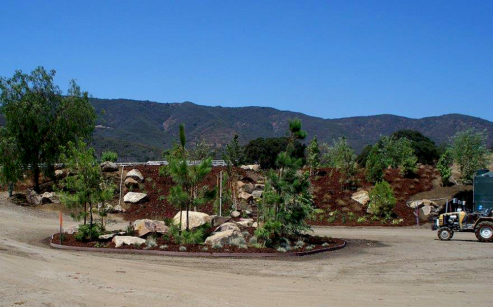 landscaping in progress