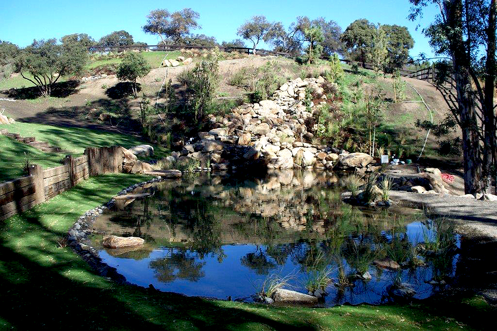 large pond, fountain, rock and trees